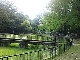 2017-09-09T18:12:45.JPG
