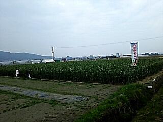2019-06-03T11:46:13.JPG